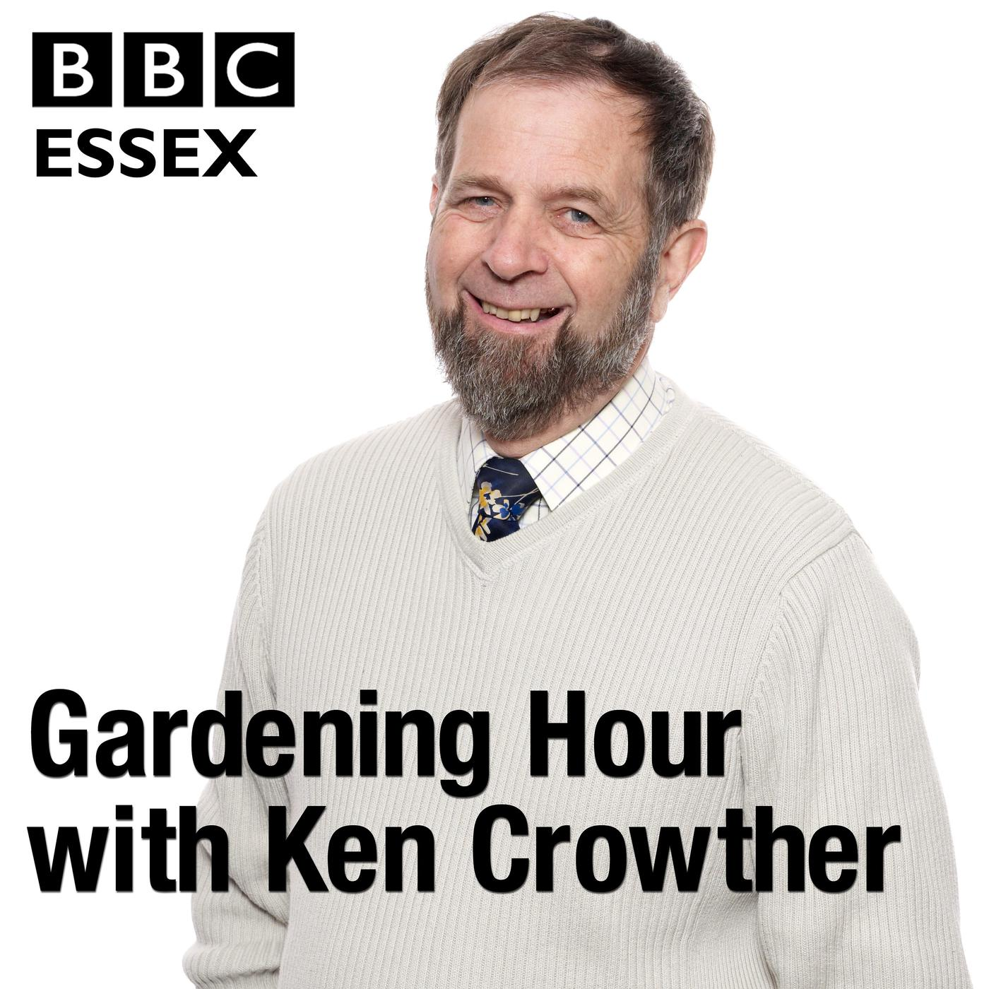 BBC Essex Gardening Hour Podcast